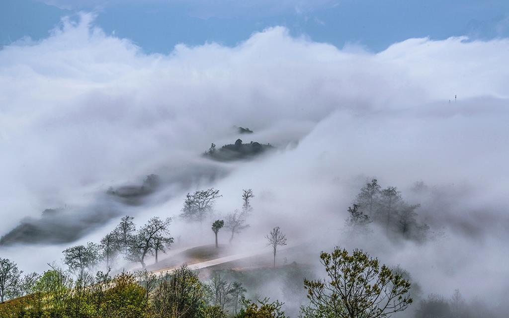 Ta Xua and the most beautiful cloud hunting areas in Northern Vietnam