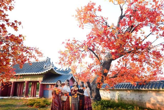 vietnam tourism, vietnam travel, compass travel vietnam,ha noi vietnam travel guide, what to do in ha noi vietnam, best destinations in ha noi vietnam