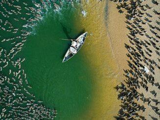 Photo courtesy of Drone Photo Awards